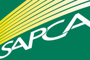 Картинка логотипа сертификата искусственных газонных покрытий JUTAgrass 4
